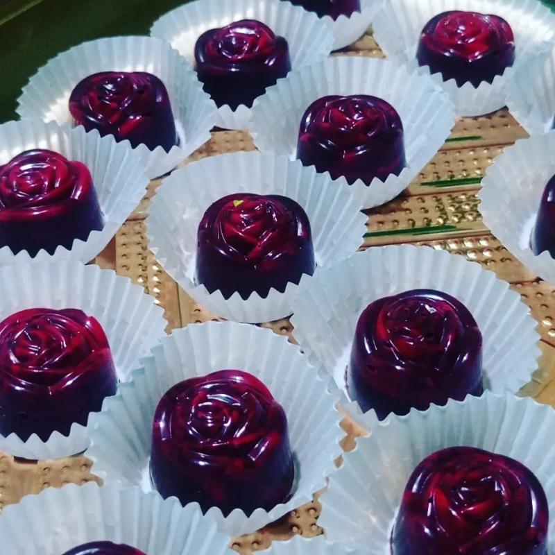 The Praline - Hardcover