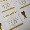 Monedas de Chocolate de fácil fundición y dosificación